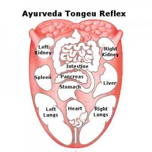 ayurveda-tongue-reflex